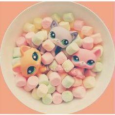 Lps in marshmallows? So cute! Little Pet Shop, Little Pets, Lps Cats, Cat Toys, Accessoires Lps, Custom Lps, Lps Accessories, Lps Littlest Pet Shop, Adrien Y Marinette