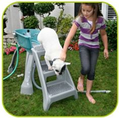 Household pet bathing tubs and accessories
