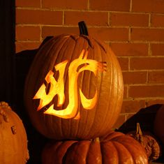 Coug-o-lantern: Pumpkin-carving stencils of the WSU Cougar head logo :: Fall 2011 :: Washington State Magazine