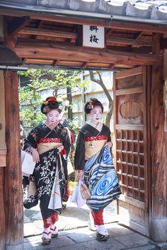 Maiko Mamefuji & Mamegiku. #japan #kyoto #geiko #geisya #maiko #kimono
