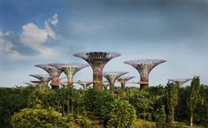 Gardens by the Bay | Grant Associates Planet Earth 2, Spine Health, Gardens By The Bay, Meeting Place, Master Plan, Endangered Species, Marina Bay Sands, Futuristic, Singapore