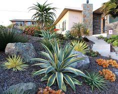 desert landscape  Las Vegas Real Estate  Laura Bailey  www.lauravegashomes.com  laurabailey@cox.net