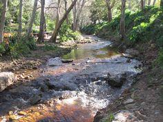 Liesbeeck Bishopscourt Village Park Cape Town, Grass, River, Park, City, Garden, Outdoor, Outdoors, Garten