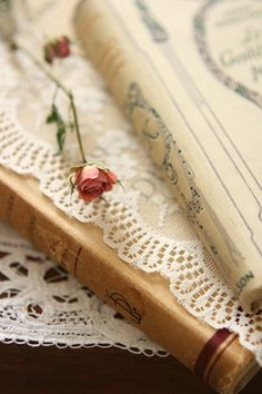 """""""I believe in the magic of books . . .  Books have the ability to find their own way into our lives.""""  ― Cecelia Ahern"""