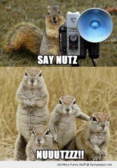 Haha funny stuff.