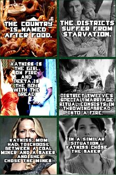 The first one is true. Panem comes from the Latin, Panem et Circenses which means bread and circuses.
