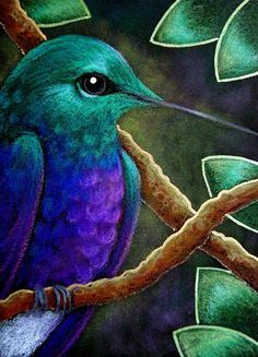 Art 'VIOLET BELLIED HUMMINGBIRD IN MY GARDEN' - by Cyra R. Cancel from DECORATION ART GALLERY