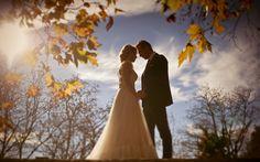 Weddings | TheofilosVenardos