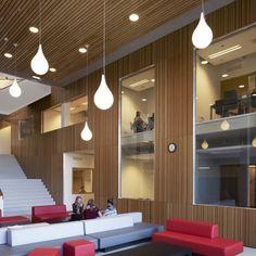 Pendelarmaturen bij het Amsterdam University College #Maas&Hagoort