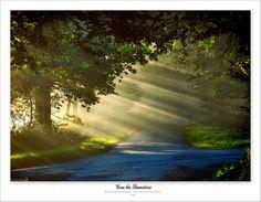 Vers la lumière