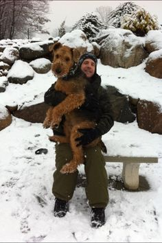 Bismarck the cutest and biggest airedale everrrr