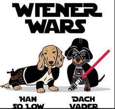 Star Wars Dachshunds