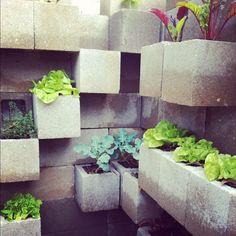 The Concrete Farmer | Laguna Dirt