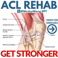 Acl Ligament, Acl Surgery Recovery, Acl Rehab, Knee Strengthening Exercises, How To Strengthen Knees, It Band, Physical Therapy, Biceps, Quad