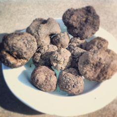 """È """"uncinato"""", un tartufo nero molto profumato. Black truffles found by our truffle hunter"""