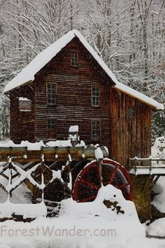 the old mill in the woods