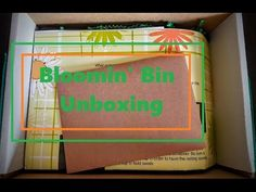 Beauty Box Reviews and Subscription Box Blog by Asheli Blogging