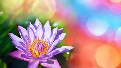 Artikel op Vrouw&Passie: Breng magie in je onderneming