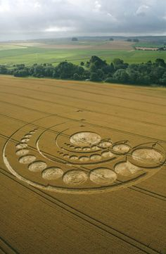 Avebury Stone Circle, Wiltshire, UK. Reported 1st August.  Images Lucy Pringle Copyright 2012