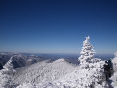 The snow covered #Smoky #Mountains