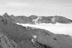 Photo by - Courtney Gosdis , This photo is about winter, mountains, weather, resorts, ski resort, ski areas, ski, ski area, ski resorts, cirque, gad, twin, valley, snowbird, picture, utah, cloud-covered, taken, peaks, resort, mountain, american state, oscine, thrush, district, passerine, haunt, crest, state, bird, fieldfare, duplicate, peak, animal, season, runner, basin, prod, spur, matching | Snapwire connects mobile photographers with businesses and brands that need creative imagery. A...