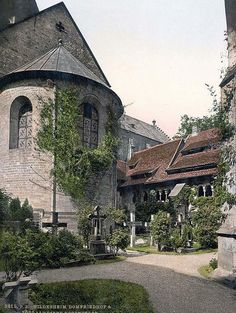 Cathedral, churchyard and 1,000 year old rose tree, Hildesheim, Hanover, Germany.