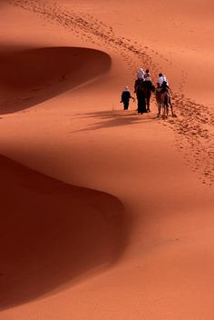 Tourists riding Camels, Saharan dunes, Morocco by Dung Mckinlay.
