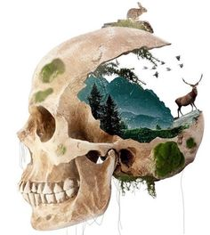 None of these images are mine =) Skeleton Drawings, Cool Drawings, Anatomy Art, Skull Art, Photomontage, Gravure, Pattern Art, Unique Art, Art Inspo