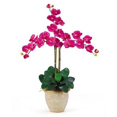 This beauty colored Triple Stem Orchid Phalaenopsis silk flower arrangement will add ambiance to the decor and it is presented by ExcellentSilkFlowers.com.