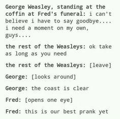 The Weasley Twins' Best Prank Yet Harry Potter Puns, Harry Potter Universal, Harry Potter World, Must Be A Weasley, Weasley Twins, Book Fandoms, Hogwarts, The Book, Drarry