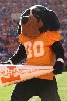 Smokey - The mascot of the Tennessee Volunteers