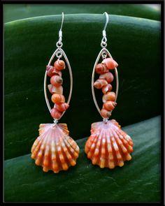Sunrise Shell& Tahitian Mongo Shell Earrings.
