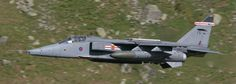 Jaguar GR.3 (XZ394 'FG') with 41 Squadron when based at RAF Coltishall in June 2005.