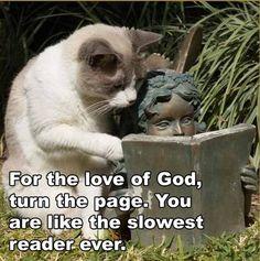Slow reading ;)