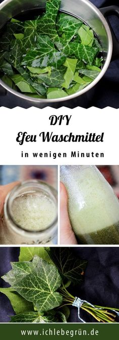 You can make your own ivy detergent yourself - this DIY .- Efeu Waschmittel kann man einfach selber machen – diese DIY Anleitung zeigt, wie… You can easily make your own ivy detergent – this DIY guide shows how to do it. The laundry will be clean! Shampooing Diy, Make Your Own, Make It Yourself, How To Make, Belleza Diy, Diy Shampoo, Natural Cleaning Products, Cleaning Hacks, Cleaning Agent