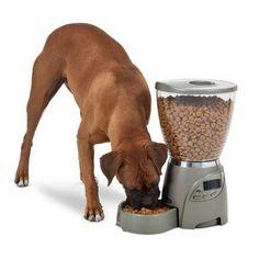 Comedero Automático para perros y gatos