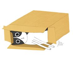 The cat and the box - Erica Salcedo Illustration