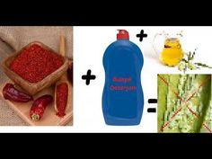 Yaprak biti ilacı,Yaprak bitine doğal çözüm,Yaprak biti ile organik mücadele,Özel formüller-1 - YouTube Make It Yourself, Youtube, Lawn And Garden, Balcony, Youtubers, Youtube Movies