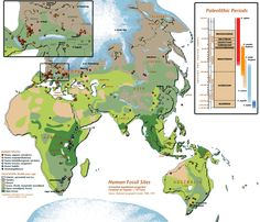 Hominoid and Human Fossil Sites - with biomes