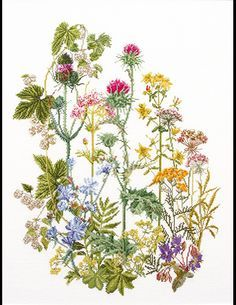 """Wild Flowers Cross Stitch Kit"" ; Flowers - Cross Stitch Patterns & Kits (Page 17) - 123Stitch.com"