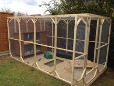 Nice aviary set up
