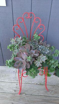 - Stuff I Want To Make - Garden Chair Succulent Gardening, Cacti And Succulents, Planting Succulents, Succulent Planters, Porch Chairs, Garden Chairs, Flower Planters, Flower Pots, Succulent Wall Art