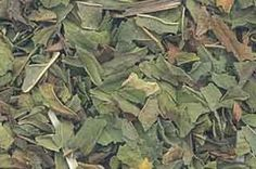 Peppermint Leaf has long been used for prophecy, healing, and cleansing. It is known to increase psychic abilities and induce prophetic dreams. It's wonderful flavor makes it a good addition to herbal smoking blends. Peppermint | Herbal Medicine | Natural Remedies www.theancientsage.com
