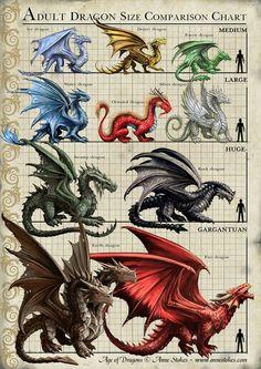 Adult Dragon Size Comparasion Chart | #mythicalcreatures #dragon #dragão #illustration #ilustração #digitalart #artedigital #infográfico #infographic
