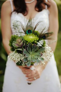 Pavo Real  #ramosdenovia #flores