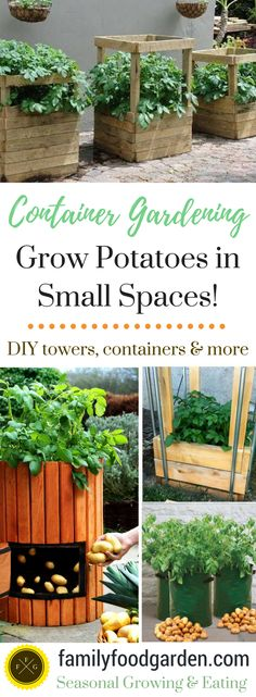Gardening With Containers Grow Potatoes in Small Spaces with Containers - Grow potatoes in containers, potato bins, potato grow bags or a potato box. Ideas for building your own potato tower or grow bin Growing Plants, Growing Vegetables, Organic Gardening, Gardening Tips, Vegetable Gardening, Potato Box, Diy Jardin, Grow Bags, How To Grow Taller