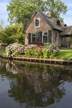 1241addc274d 28 Best Holland Country Garden images   Holland country, Garden, Garten