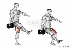 "Download the royalty-free photo ""Squatting on one leg. Exercising for bodybuilding Target muscles are marked in red. Initial and final steps. 3D illustration"" created by alexandermak at the lowest price on Fotolia.com. Browse our cheap image bank online to find the perfect stock photo for your marketing projects!"