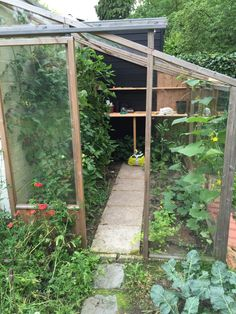 tomaten Eco Garden, Fruit Garden, Green Garden, Edible Garden, Vegetable Garden, Home And Garden, Garden Ideas, Jungle Gardens, Flora