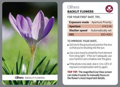 44 tips cards for photographers to cut out and keep or browse on your phone! Photography Cheat Sheets, Landscape Photography Tips, Photoshop Photography, Aerial Photography, Night Photography, Landscape Photos, Nature Photography, Scenic Photography, Digital Camera Magazine